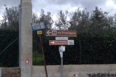 TAPPA 1 ROMA – CASTEL GANDOLFO (7)