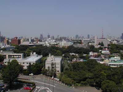...Finalmente Tokyo, dalle finestre del nostro albergo a Takanawa